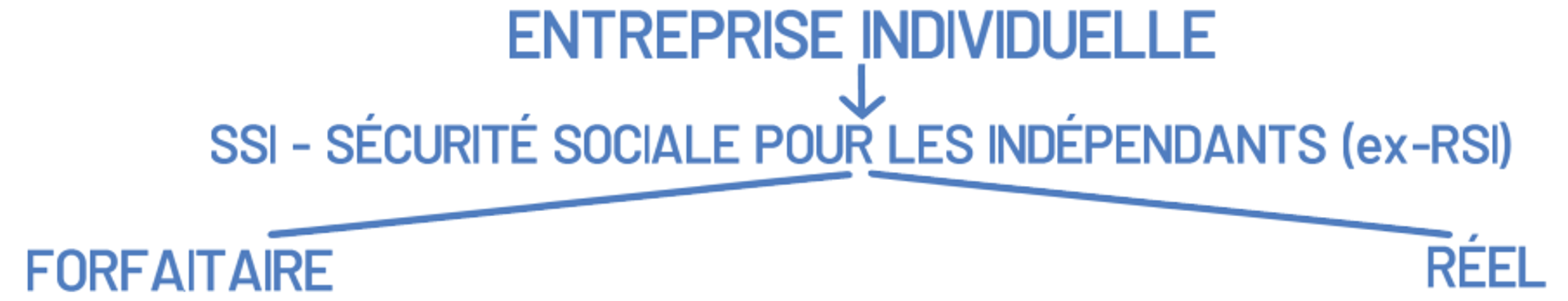 RSI entreprise individuelle